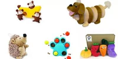13 OMG Cute Dog Spielzeug, das Ihr Welpe braucht