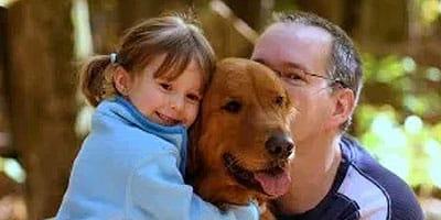 10 Tipps, damit sich Ihr Rettungshund so schnell wie möglich zu Hause fühlen kann