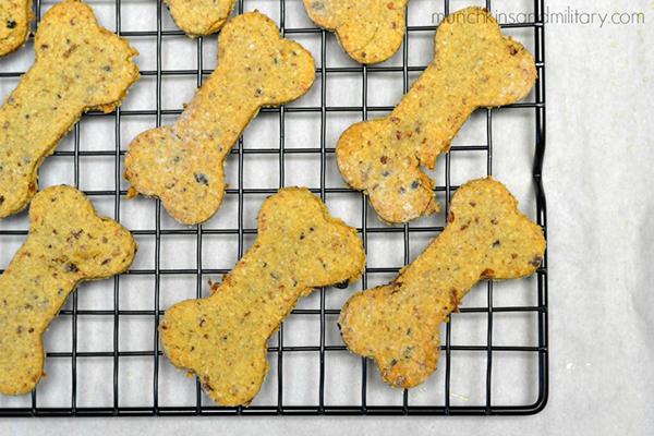 10 Cheesy Dog Treat Rezepte, um Ihren Welpen zu verwöhnen