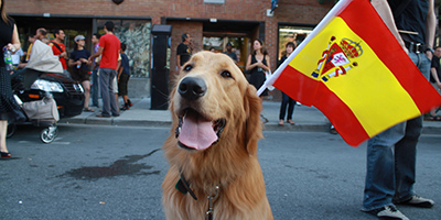 Spanische Hundenamen - 200+ Super Spanische Namen