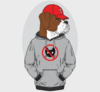 Rapper Dog Names - Inspiriert von der Hip Hop Kultur