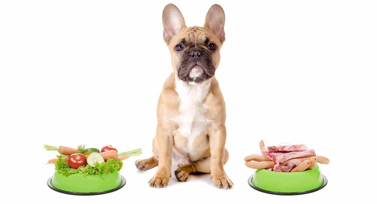 Gesundes Hundefutter, um Ihren geliebten Hund in Spitzenform zu halten