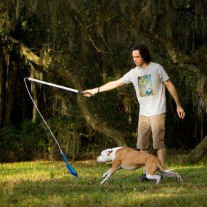 Die 11 besten Spielzeuge für hyperaktive Hunde