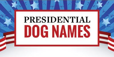 Ehrfürchtige Namen der Präsidentenhunde [Infografik]