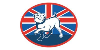 Britische Hundenamen - 145 tolle Ideen für Ihren Welpen
