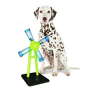 Best Dog Puzzle Toys & Dog Spiele