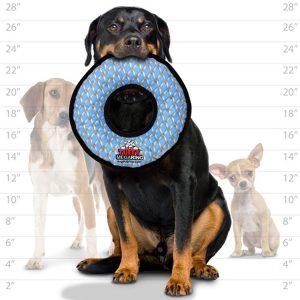 10 beste Spielzeug für große Hunde