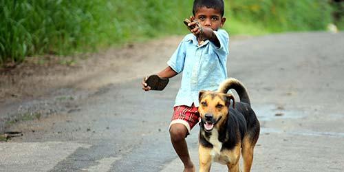 101 Ideen für Jungenhund-Namen